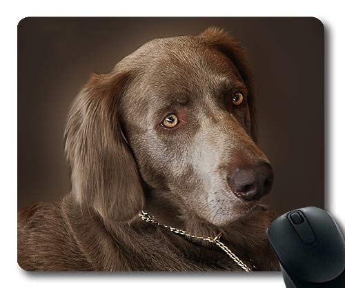 Custom Mouse pad,Gaming Puppy Dog Mouse pad,Weimaraner Dog Hunting Dog Animal Portrait Pet,Dogs Gaming Mouse mat