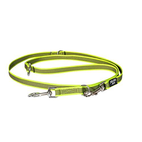 Julius-K9 216GM-NE-DP Color & Gray, gumierte Leine, neon-grau, doppelt verstellbar, 20 mm x 2, 2 m, max für 50 kg Hunde, 208 g