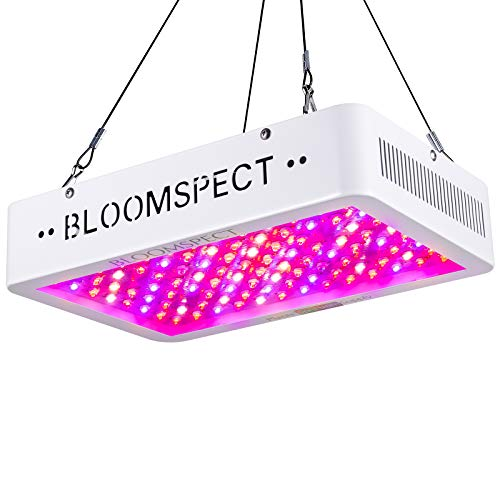 BLOOMSPECT 1000W LED Grow Lights for Indoor Plants Veg and Bloom Full Spectrum Suitable for Grow Tent (100pcs 10 Watt Double Chips LEDs)