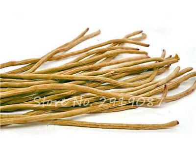 Vente Promotion! 5 Pcs mixte Graines long haricot Très facile d'intérêt Mini Garden Crochet d'or légumes biologiques en santé Graden plantes 19