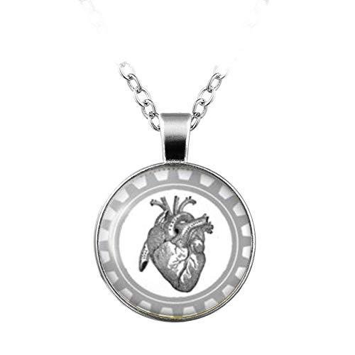 heng yuan tian cheng collar de corazón anatómico colgante de medicina cardiología, collar de regalo médico