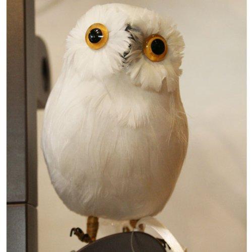 プエブコ PUEBCO バードオフジェ ARTIFICIAL BIRDS 白フクロウ White Owl Sサイズ 正面向き 108070