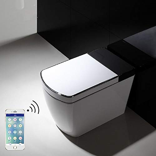 Ecofresh Bathroom tankless electric automatic intelligent toilet with remote control smart WC smart bidet one-piece toilet