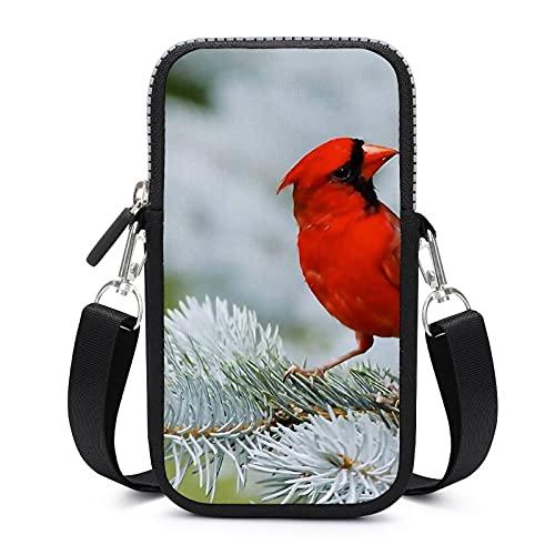 Bolso bandolera con correa extraíble para el hombro, color rojo, impermeable, para el dinero, para la cintura, para gimnasio, fitness, para niñas