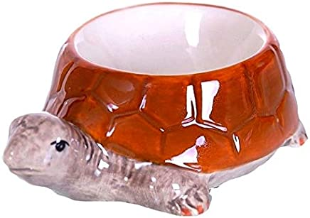 Preisvergleich für Eierbecher Set - Modell Schildkröten , 2-er Set exclusives Design