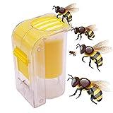 EMVANV Imkerwerkzeuge, 1/4-teilige Bienenkönigin, Einhand-Fanger, leichtes Gewicht,...