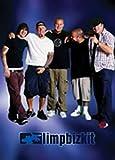 Limp Bizkit Group Poster (61 cm x 91,5 cm)