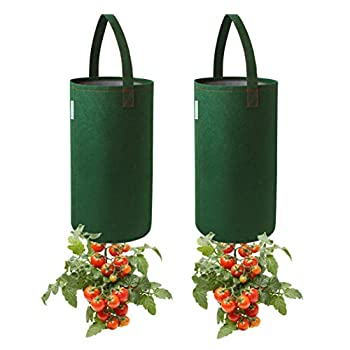 Pri Gardens Upside Down Tomato Planter 2- Pack Requires Plants,Soil and Fertilizer not Included