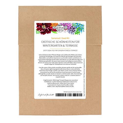 Exotische Schönheiten für Wintergarten & Terrasse - Samenset mit 5 frostempfindlichen Blühpflanzen aus aller Welt