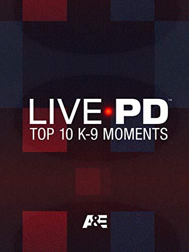 Top 10 K9 Moments
