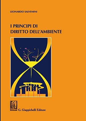 I principi di diritto dell'ambiente