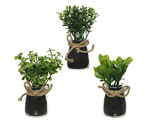 Decoris Mini Kunstpflanze im Glas Topf 13cm x 1 Stück sortierte Plastikpflanzen
