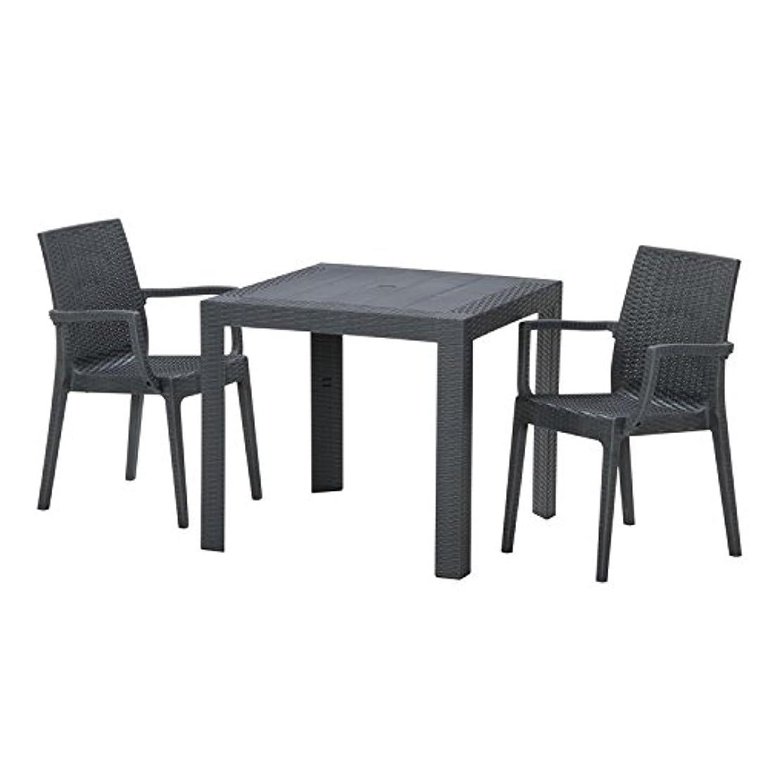 迷信グリーンランド立派な【ガーデンテーブル チェア セット ラタン調 庭】ステラテーブル?チェア(肘つき)3点セット ブラック(C187-3B-S1)