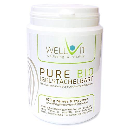 Pure Bio Igelstachelbart 100g Hericium erinaceus Vitalpilzpulver Affenkopfpilz aus EU-Bio-Landwirtschaft, vegan, ohne künstliche Zusatzstoffe
