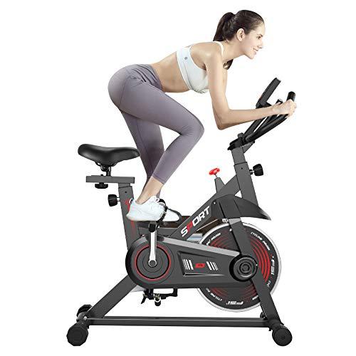 HT&PJ Bicis Estaticas Bicicleta Estatica Spinning, Pantalla LCD, Asiento Y Manillar Regulables, Soporte para Teléfono Móvil, Transmisión por Correa, Volante De Acero De 5 Kg