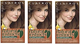 Clairol Natural Instincts 6G 12 Toasted Almond Light Golden Brown 1 Kit  (Pack of 3)