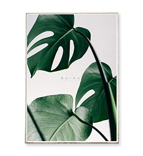 DIN A4 Kunstdruck Poster MONSTERA -ungerahmt- Philodendron, Pflanze, Blatt, tropisch