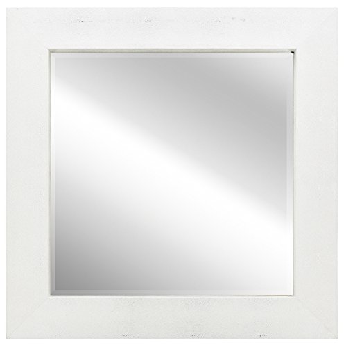 Empire Art Direct Exotic Stingray Leather Framed Occasional Mirror, Silver on White, 48-Inch by 48-Inch