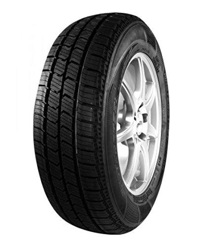 DURATURN DN249-165/70/R13 88R - C/C/71dB - Transport Reifen