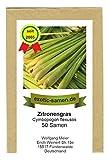 Zitronengras, Lemongrass - Cymbopogon flexusos - 100...