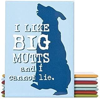 Dog is Good I Like Big Mutts Magnet