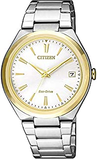 citizen Eco drive Silver Dial Womens Watch FE6024-55B