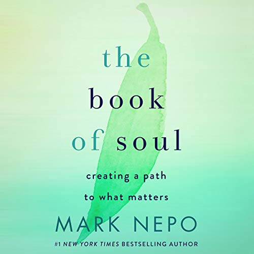 The Book of Soul cover art