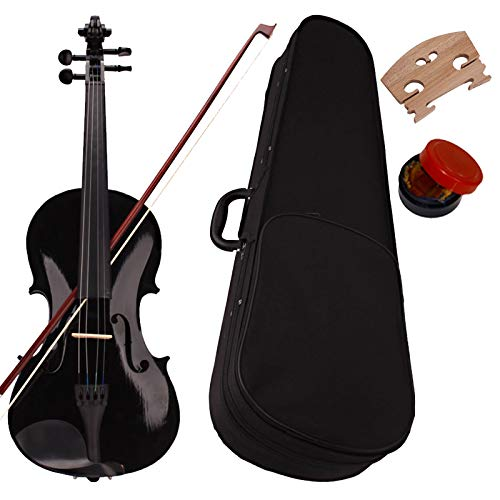 Full Size 4/4 Acoustic Violin Set,Beginner Violin Vintage Solid Wood Violin Starter Kit with Carrying Case,Bow and Rosin (Black)