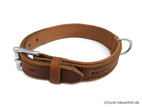 Lederhalsband für Hunde hellbraun cognac gefüttert Chrom, Halsband aus Fettleder (50 (Halsumfang 36cm - 44cm))