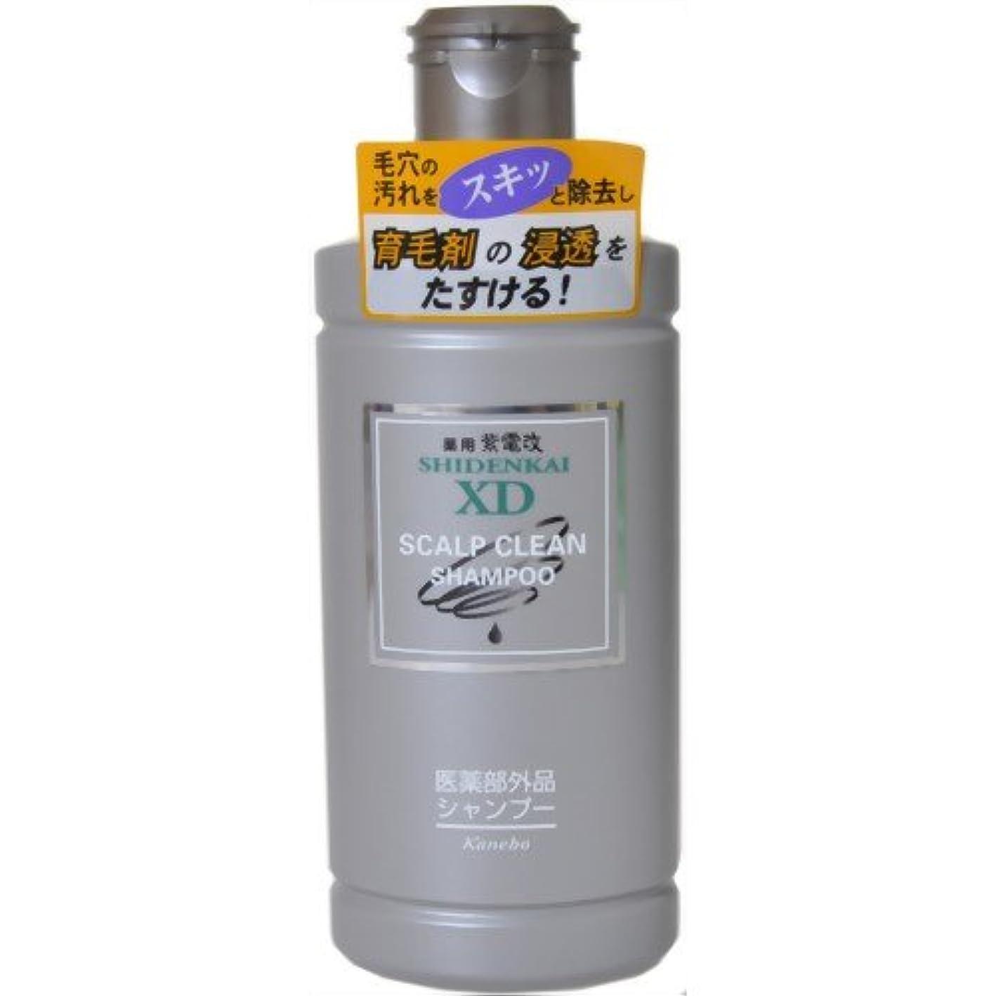 ブレース表面マラソンカネボウ 薬用紫電改X.Dシャンプー 250ml