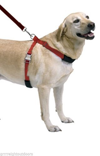 Sporn Simple Dog Control Blue L XL Harness Girth 27 to 41 Inch Labradors Collies