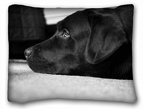 TSlook Manta Mantas Labrador en Blanco y Negro Manta de Forro Polar para sofá/sofá/Cama 40x 50