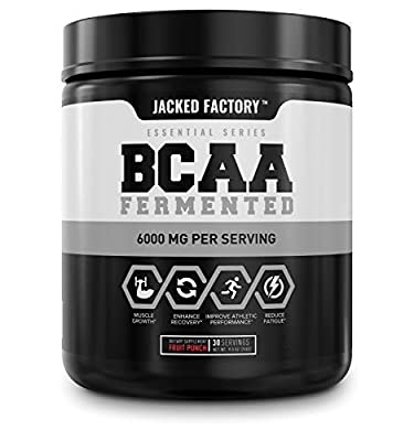 BCAA Powder (Fermented) - 6g Branched Chain Essential Amino Acid Supplement for Improved Muscle Recovery, Reduced Fatigue, Increased Strength, and Muscle Growth - 30 Servings, Fruit Punch