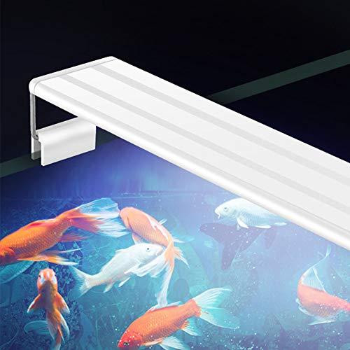 Leoie LED-lamp met uittrekbare klem voor aquarium, voor vissen, wit en blauw licht, GX-A200