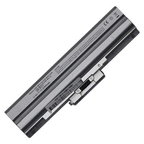 BTMKS Batteria per PC portatile Sony VAIO VGP-BPS21A VGP-BPS13/Q VGP-BPS13/S VGP-BPS13A VGP-BPS13/B VGP-BPS13 VGP-BPS21 VGP-BPS21B VGP-BPL21 VGP-BPS13B/S VGP-BPS13A/B VGP-BPS13A/S