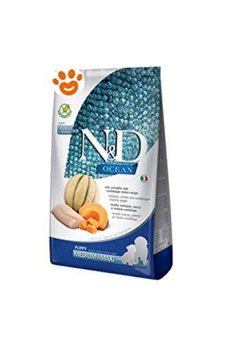 Farmina N&D Ocean Puppy Merluzzo Zucca Melone Cantalupo Medium/Max 12kg