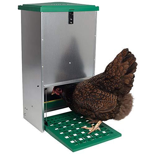 Brutkastenhandel Alimenteur automatique de poulet contient...