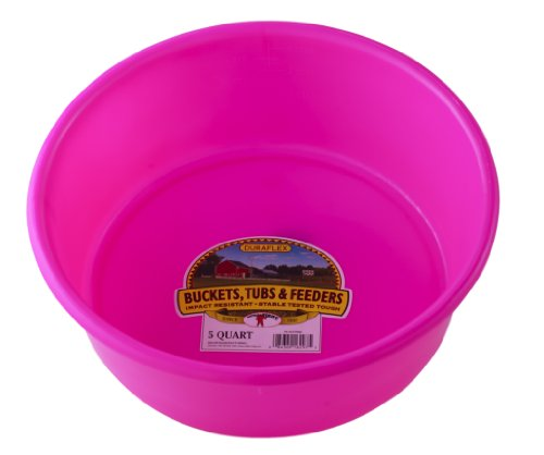 Little Giant Plastic Utility Pan (Hot Pink) Durable & Versatile Short Livestock Feeding Bucket (5 Quart) (Item No. P5HOTPINK)