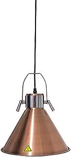 JIAWANSHUN 270mm Food Warmer Lamp Food Heat Lamp Food Insulation Lamp 110V
