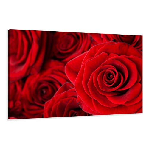 Visario Leinwandbilder 5058 Bild auf Leinwand Rose, 120 x 80 cm, rot