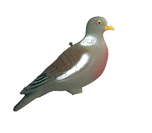 Europ arm - Appelant Palombe-Pigeon