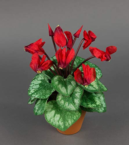 Seidenblumen Roß Alpenveilchen 28cm rot im Topf NT künstliche Blumen Kunstpflanzen Kunstblumen Cyclamen Cyclame