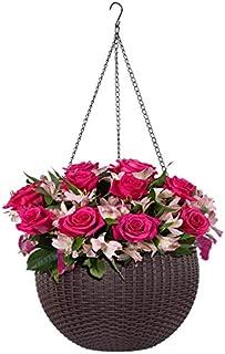 Best decorative indoor hanging pots Reviews