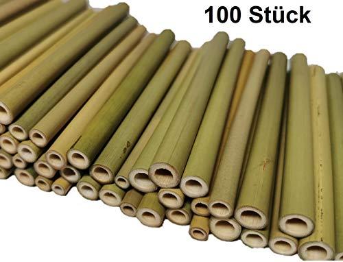 aktiongruen Bambusröhrchen Wildbienenhotel Insektenhotel Bastelsachen 12cm (100 Stück)