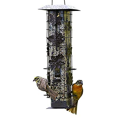 bird feeder, End of 'Related searches' list