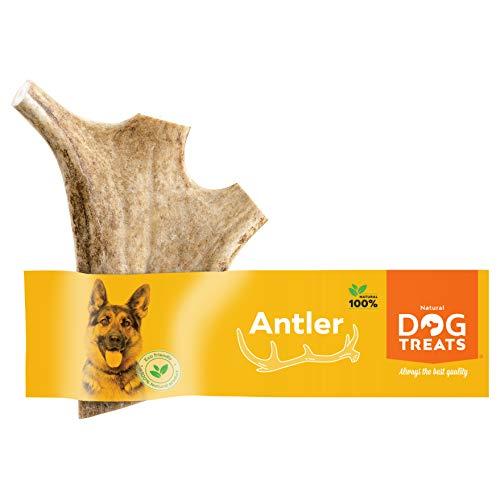 100% Natural Mordedor Asta de Gamo para Perros Cuerno Masticar Juguete, Tamaño Medium