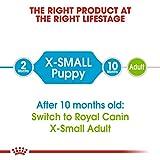 Royal Canin Hundefutter X-Small Junior, 1,5 kg, 1er Pack (1 x 1.5 kg) - 5