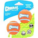2-Pack Chuckit Tennis Ball Dog Toy