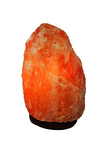Rosa KristallSalzlampe Salzleuchte Naturform 2-29 Kg inklusive Salzlampenfassung CE E14+ 2x Birne (4-6 Kg)