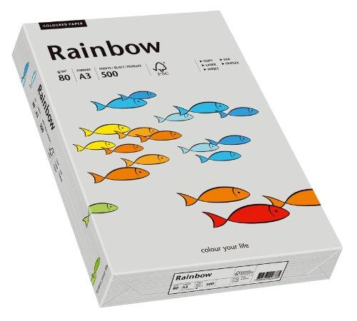inapa Papyrus 88042808 Farbiges Kopierpapier, Bastelpapier: Rainbow 80 g/m², A3, 500 Blatt, Grau